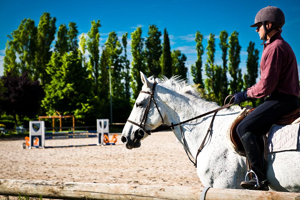 scuola equitazione roma fotogallery